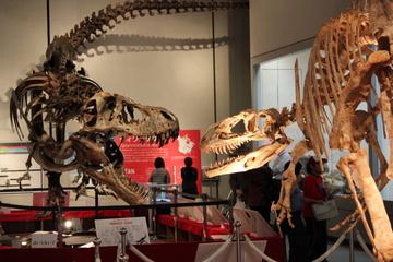 世界一イケメンなティラノが待っている特別展『ティラノサウルス-肉食恐竜の世界-』