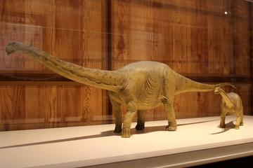 来年3/16~17に開催される『ひょうご恐竜化石国際シンポジウム』が凄い件