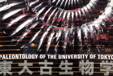 『東大古生物学展』が会期延長しているみたい