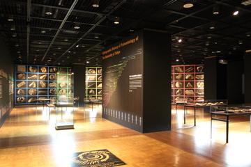 東大の古生物研究の歴史を多数の標本と共に紹介する特別展『東大古生物学 130年の軌跡』