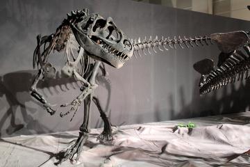 2013年夏の自然史系博物館などの特別展や恐竜展とかまとめ [8/7更新]