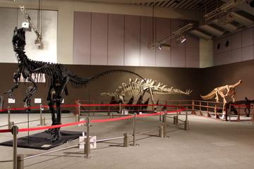 ブラキロフォサウルスのミイラ化石「レオナルド」が観られる。『大恐竜帝国2013』