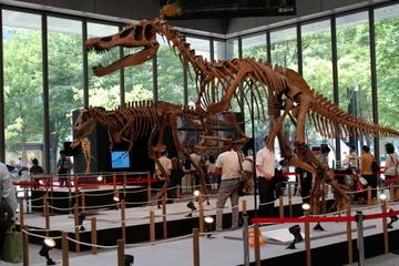 都心の商業ビルで貴重な恐竜標本が無料で観られる!『大恐竜展in丸の内2013』