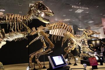 ゴビ砂漠の貴重な実物恐竜化石を大量展示。特別展『大恐竜展 ゴビ砂漠の驚異』