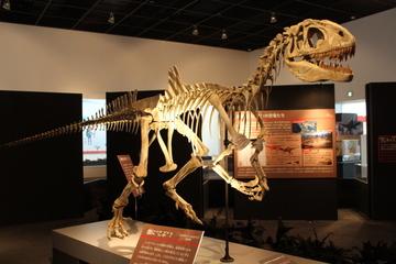 2014年に行った博物館・水族館・動物園等のまとめ