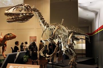 2015年夏 自然史系博物館等の特別展・企画展まとめ【8/10追記】