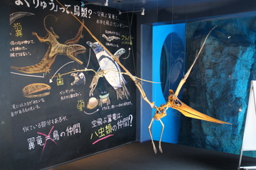恐竜博物館と京都水族館とのコラボ企画『恐竜たちと水族館2015』
