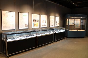 兵庫県内の二館で開催中の、タンバティタニス(丹波竜)がテーマの企画展を両方紹介。