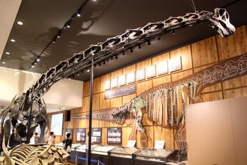 12月10~11日は丹波・篠山で恐竜関連のイベントが盛り沢山でアツい!