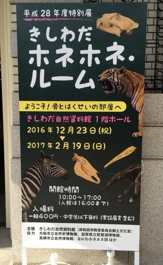 1-写真 2017-02-14 13 49 21.jpg