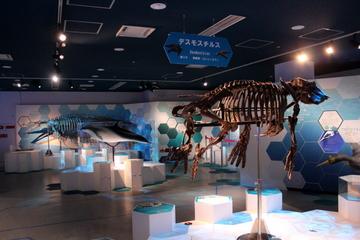 海遊館の企画展『デスモスチルスのいた地球』は古生物を水族館らしい切り口で展示していて良かった。