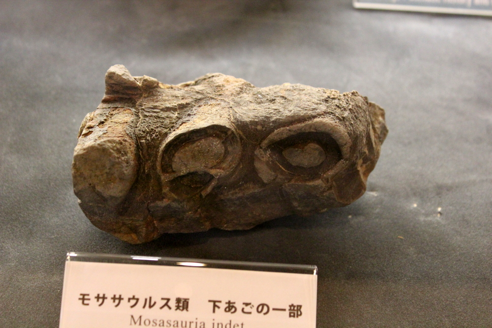 http://pangea-note.com/blog/blogimg/0001/1-IMG_3353.JPG