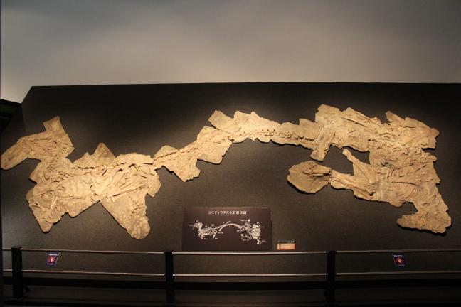 特別展『恐竜の大移動』