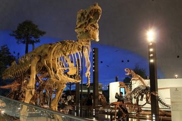 恐竜ファンの聖地!国内最大級の恐竜専門博物館。福井県立恐竜博物館