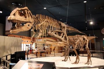 体験型の大型展示の豊富な大規模科学館。名古屋市科学館