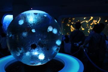 クラゲもいいけど深海関連の展示がアツい!新江ノ島水族館