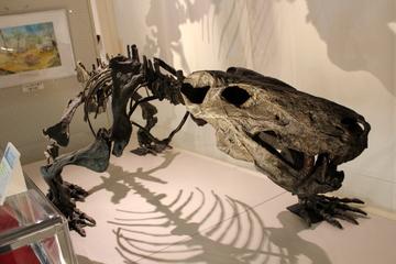 ペルム紀の化石展示が充実した珍しい化石専門の博物館。佐野市葛生化石館