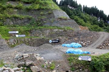 勝山の化石発掘現場が見学できる福井県立恐竜博物館の野外恐竜博物館
