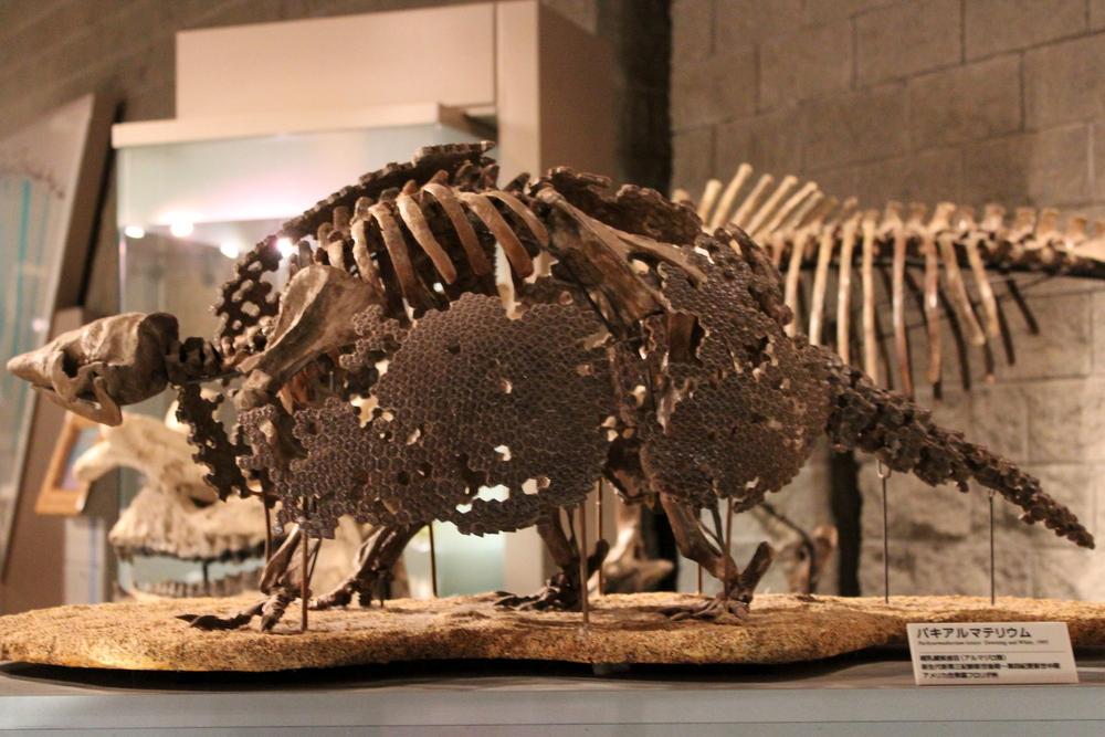 http://pangea-note.com/museum/blogimg/0001/1-IMG_2420.JPG