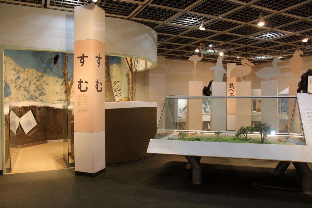 http://pangea-note.com/museum/blogimg/0001/1-IMG_7228.JPG