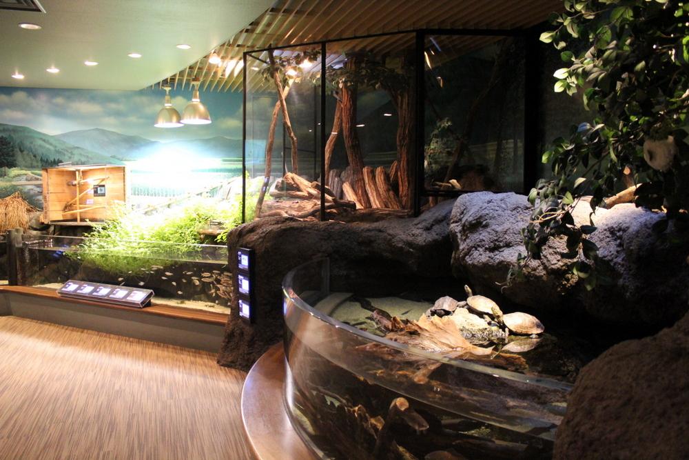 http://pangea-note.com/museum/blogimg/0001/1-IMG_8710.JPG