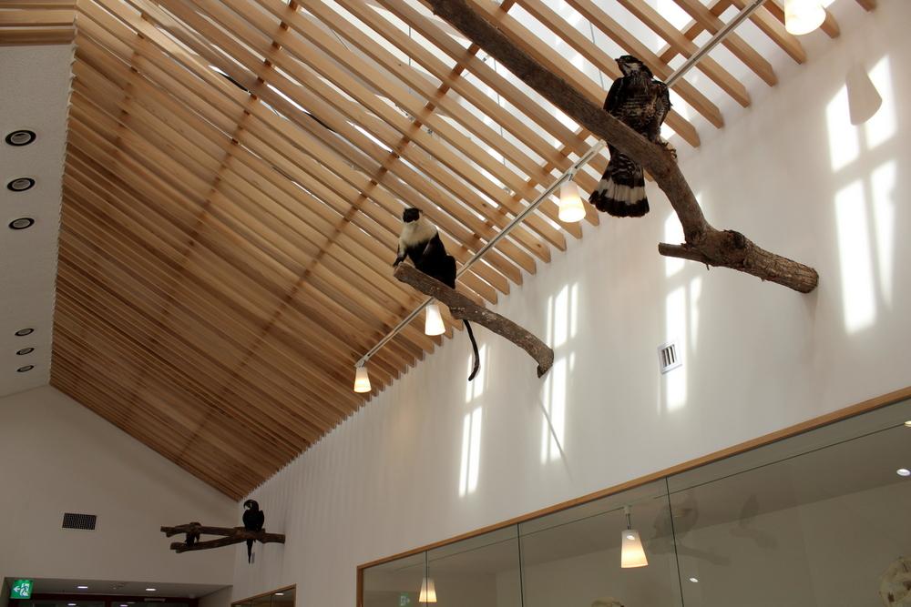 http://pangea-note.com/museum/blogimg/0001/1-IMG_9044.JPG