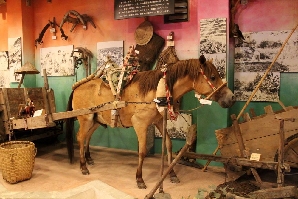 http://pangea-note.com/museum/blogimg/0001/1-IMG_9959.JPG