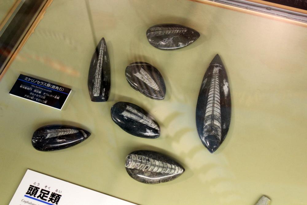http://pangea-note.com/museum/blogimg/0002/1-IMG_0093.JPG