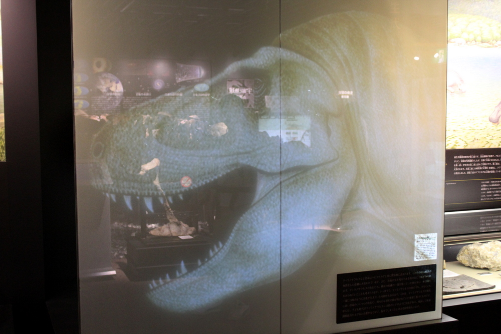 http://pangea-note.com/museum/blogimg/0002/1-IMG_0110.JPG