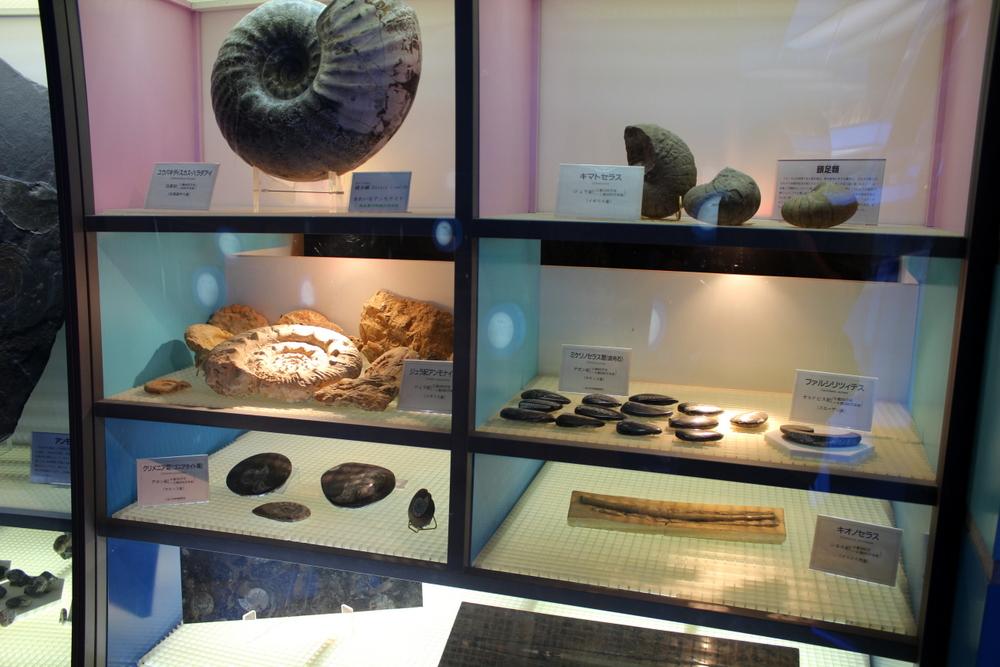 http://pangea-note.com/museum/blogimg/0002/1-IMG_0137.JPG