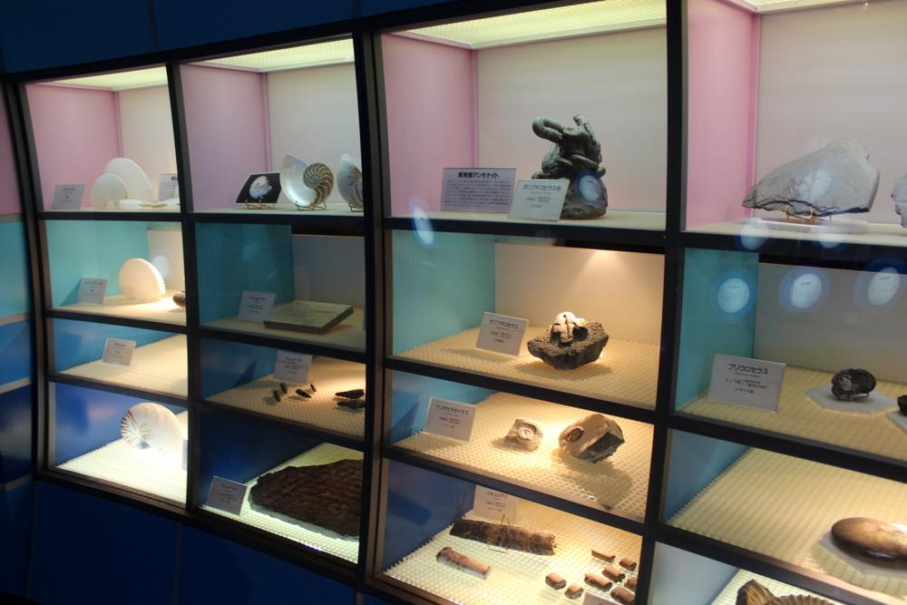 http://pangea-note.com/museum/blogimg/0002/1-IMG_0138.JPG