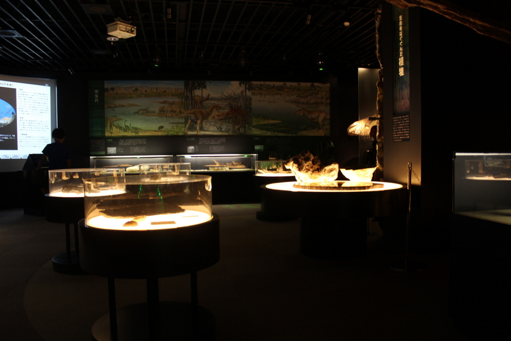http://pangea-note.com/museum/blogimg/0002/1-IMG_0207.JPG