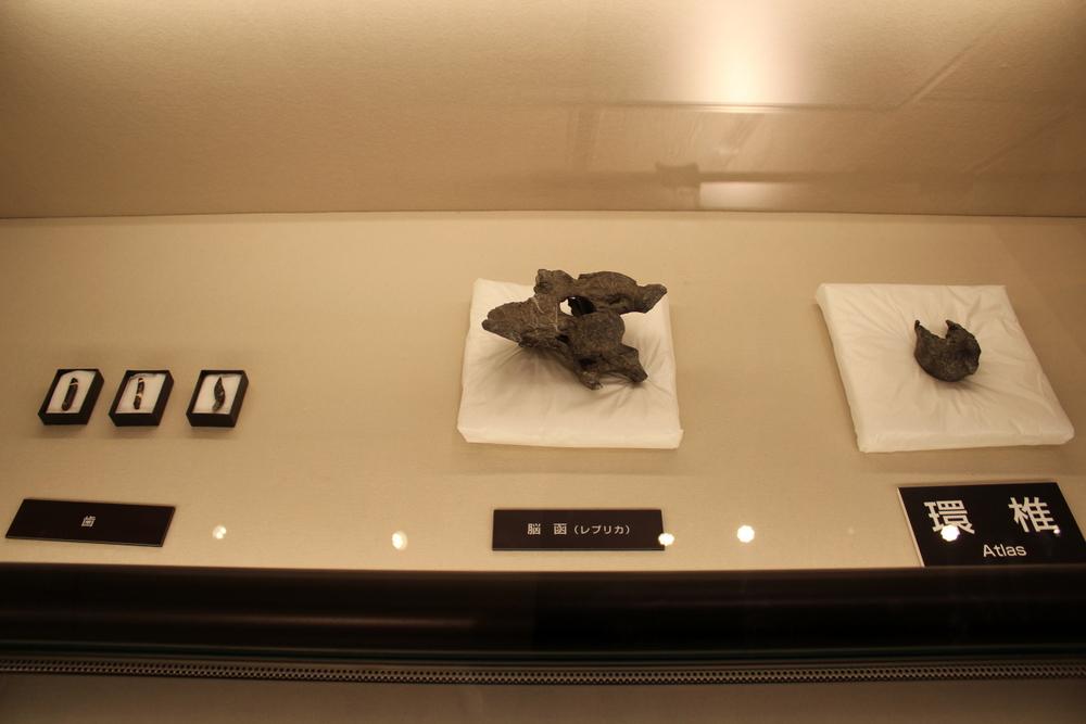 http://pangea-note.com/museum/blogimg/0002/1-IMG_0795.JPG