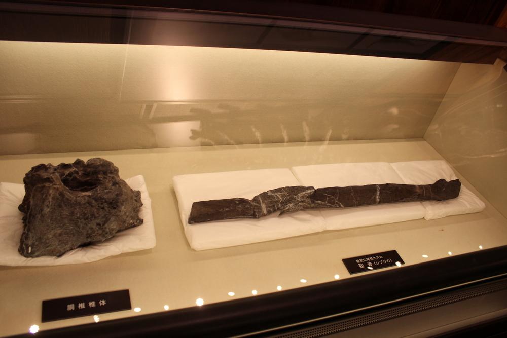 http://pangea-note.com/museum/blogimg/0002/1-IMG_0797.JPG