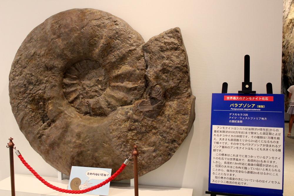 http://pangea-note.com/museum/blogimg/0002/1-IMG_1206.JPG