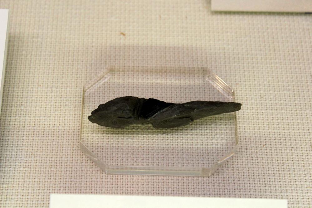 http://pangea-note.com/museum/blogimg/0002/1-IMG_1211.JPG