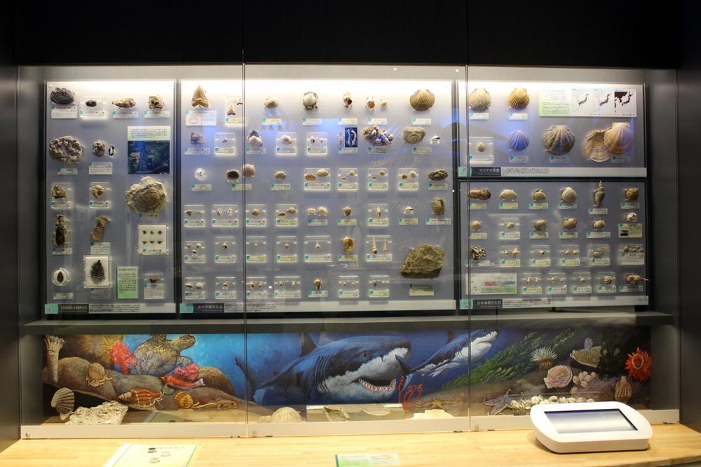 http://pangea-note.com/museum/blogimg/0002/1-IMG_1670.JPG