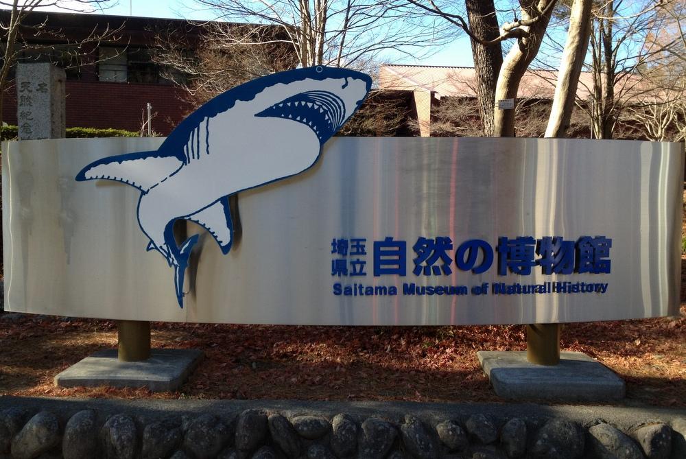 http://pangea-note.com/museum/blogimg/1-%E5%86%99%E7%9C%9F%2012-12-11%2012%2059%2045.jpg