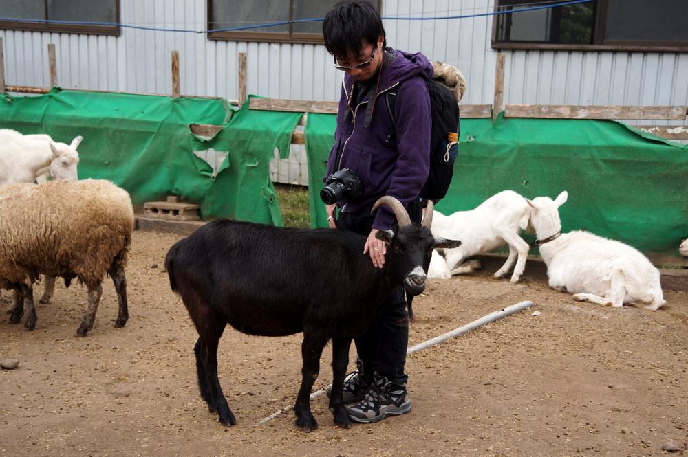 http://pangea-note.com/museum/blogimg/1-DSC06621.JPG