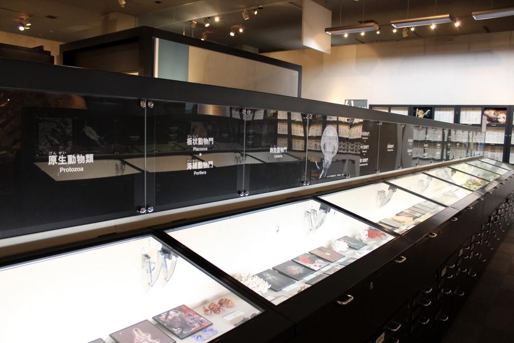 http://pangea-note.com/museum/blogimg/1-IMG_0292.JPG
