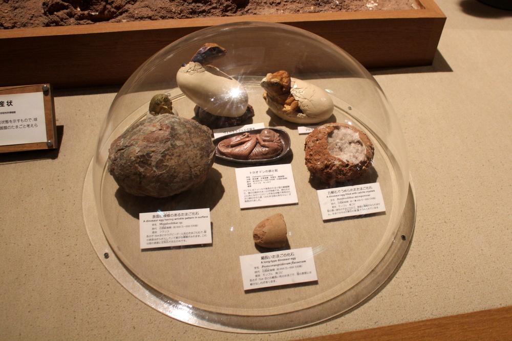 http://pangea-note.com/museum/blogimg/1-IMG_1024.JPG