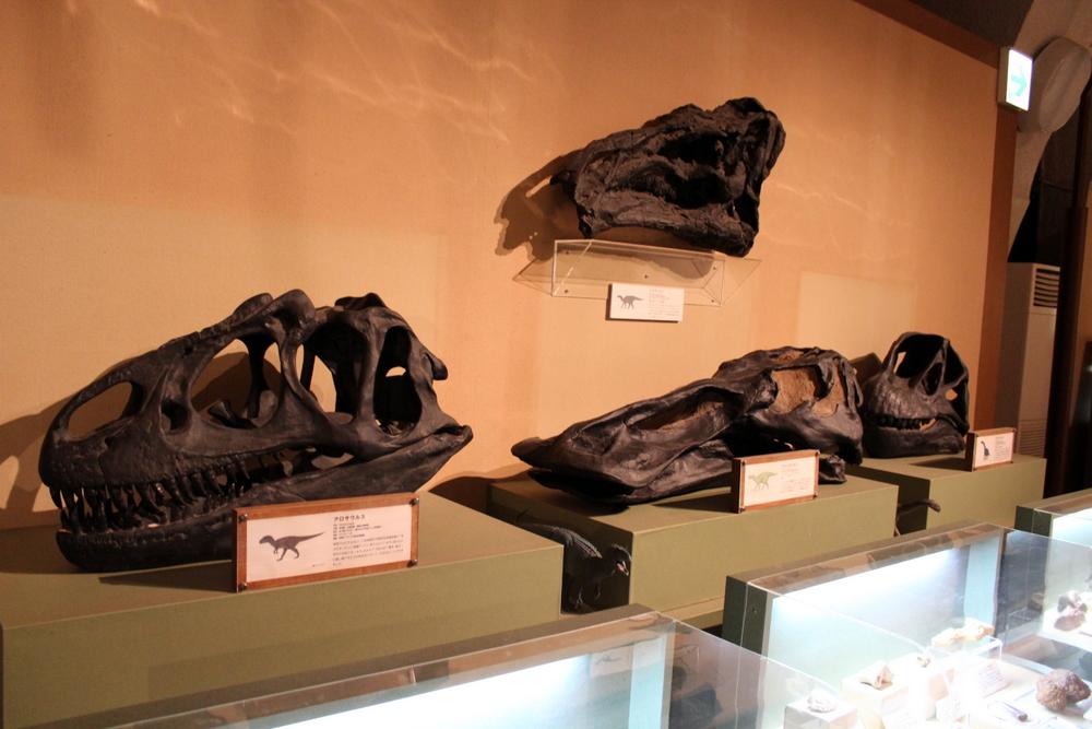 http://pangea-note.com/museum/blogimg/1-IMG_1027_1.JPG