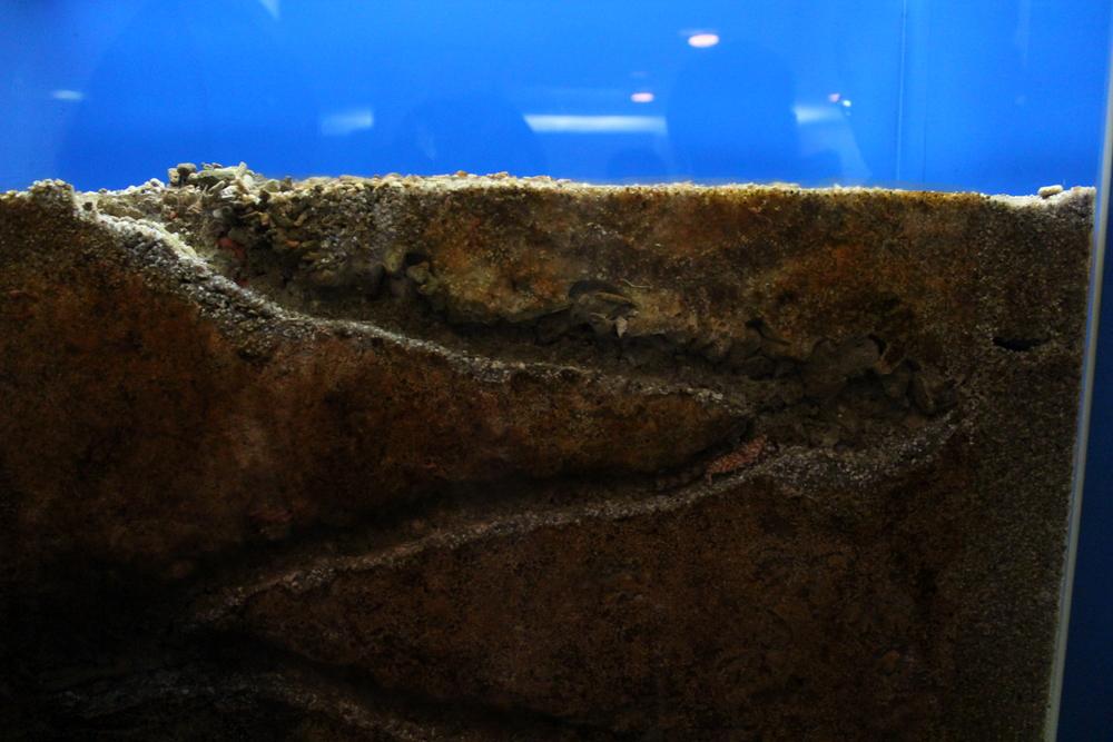 http://pangea-note.com/museum/blogimg/1-IMG_1105.JPG