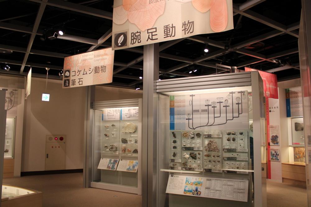 http://pangea-note.com/museum/blogimg/1-IMG_1715.JPG
