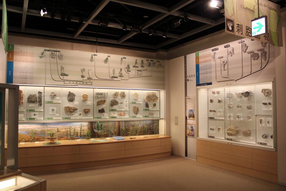 http://pangea-note.com/museum/blogimg/1-IMG_1717.JPG