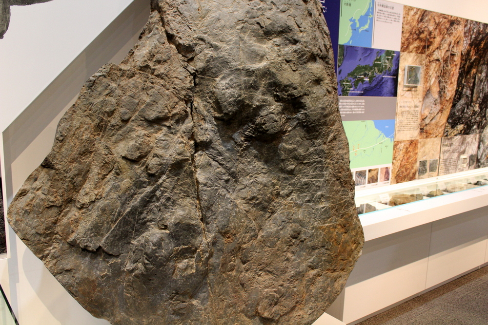 http://pangea-note.com/museum/blogimg/1-IMG_1789.JPG