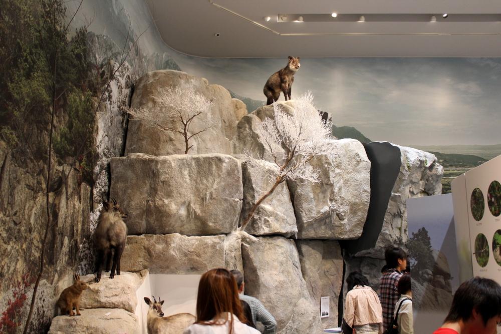 http://pangea-note.com/museum/blogimg/1-IMG_1812.JPG