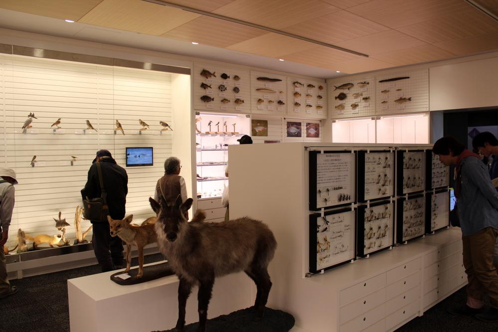http://pangea-note.com/museum/blogimg/1-IMG_1861.JPG