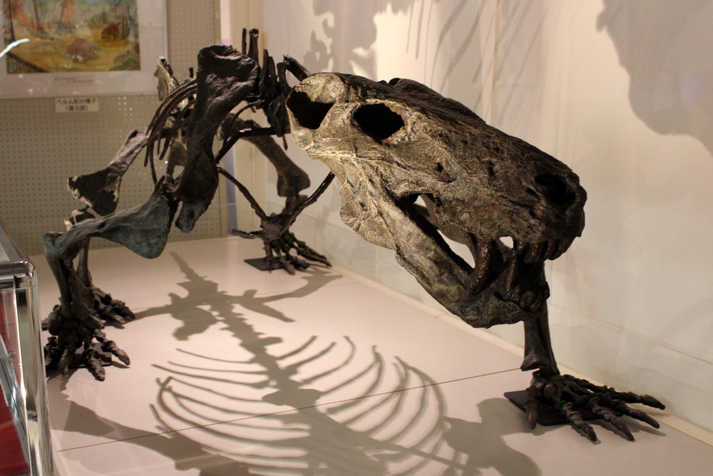 http://pangea-note.com/museum/blogimg/1-IMG_2333.JPG