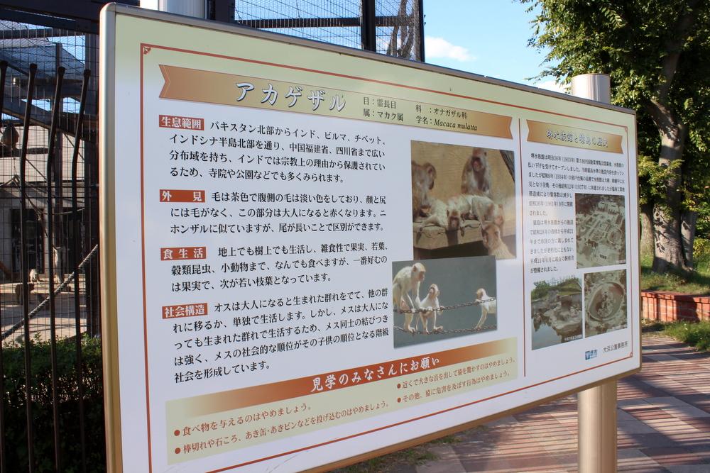 http://pangea-note.com/museum/blogimg/1-IMG_2683.JPG